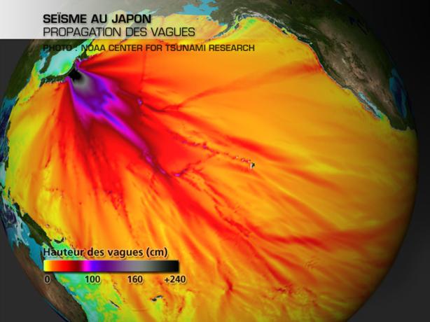 Séisme au Japon : comment se forme un tsunami ?